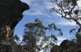 Природа Австралии-3