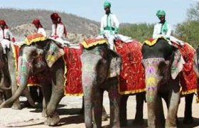 фото слонов с наездниками в Индии