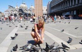 Голуби на площади Святого Марка в Италии