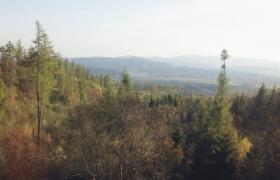 slovakia (18)